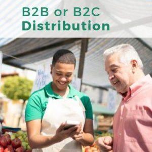 B2B or B2C Distribution