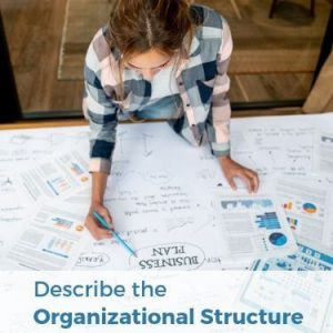 Describe the Organizational Structure