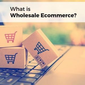 What is Wholesale Ecommerce